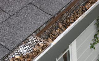 Roof Maintenance with a gutter guard
