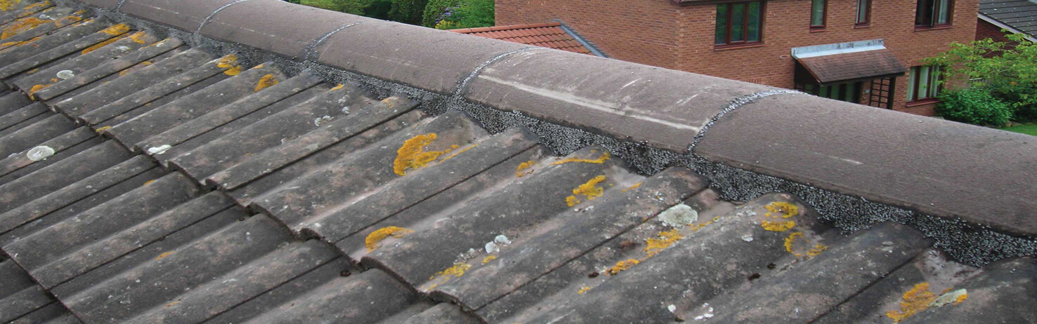 Flexim Roof Repair Putty